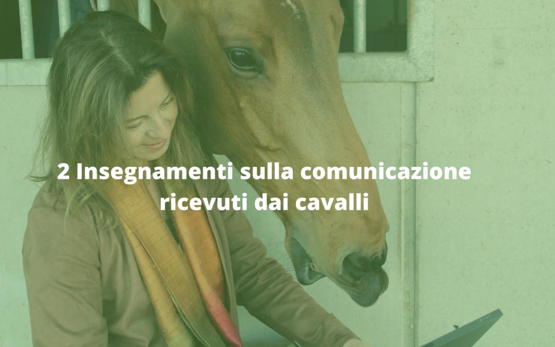 2 Insegnamenti sulla comunicazione ricevuti dai cavalli